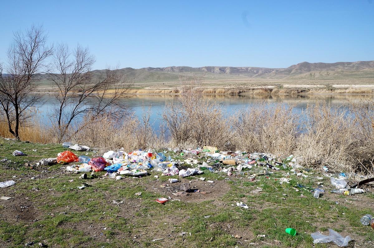 картинка с мусором берег реки